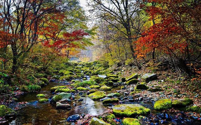 沈陽周邊自駕游:本溪洋湖溝生態游覽區-原始生態畫家村。公眾號:inhauto